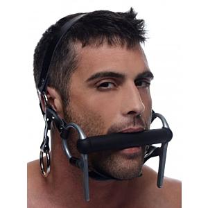 Steed Head Harness