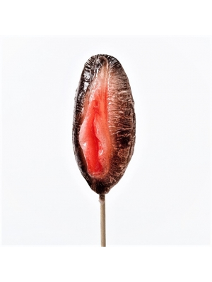 Sweets-Lollipop Vagina